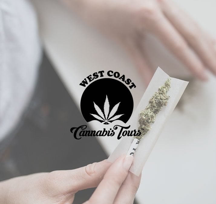 West Coast Cannabis WordPress Website Development