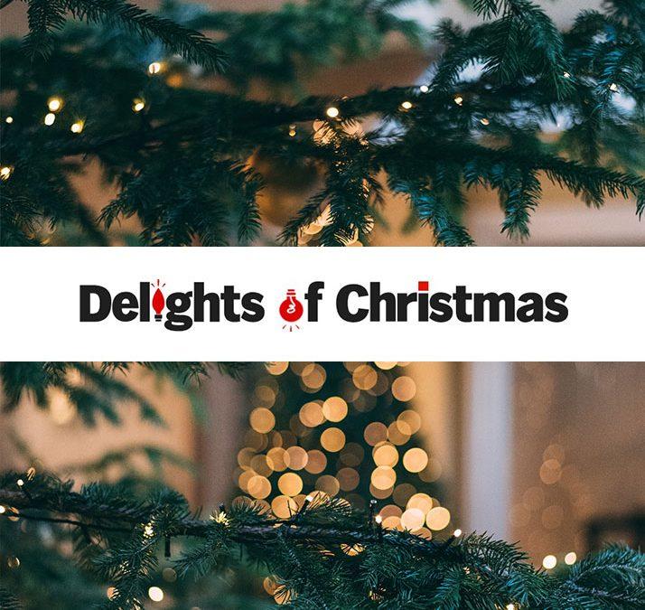 Delights of Christmas Website Development