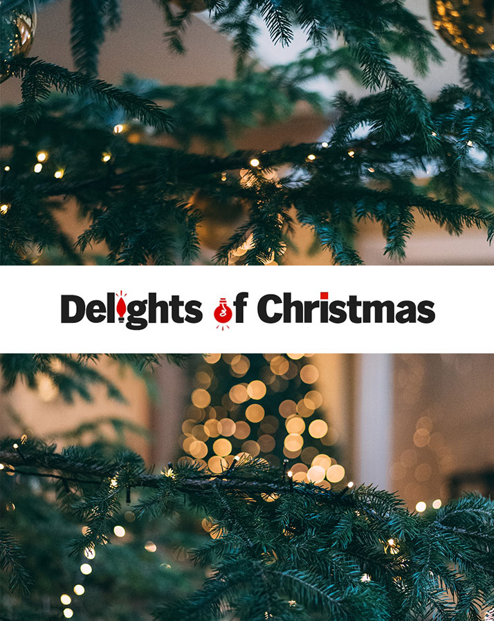 Delights of Christmas Website Development